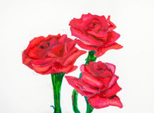 Red rose flowers on green stems drawn by felt pen Stock Photos