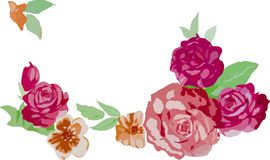 Red rose flowers illustration Royalty Free Stock Photos