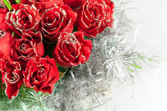 Red rose flowers with sparkle particles. Beautiful red rose flowers with sparkle particles stock photos