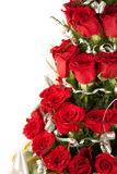 Red rose flowers  with water drops Royalty Free Stock Photos