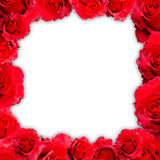 Red rose frame isolated. Red rose frame on white background for valentine card Royalty Free Stock Photography