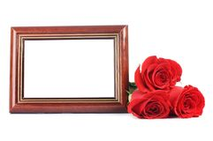 Red rose with a framework for photo Royalty Free Stock Photography