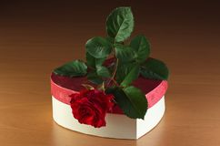 Red rose in gift box. Red rose in gift box on bright wooden table Royalty Free Stock Photo