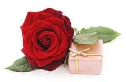 Red rose with gift box. Stock Images