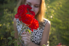 Red rose with girl's face on golden back lighting sunset summer. (soft focus effect and blurred lights bright green with spring bokeh on background Stock Photos