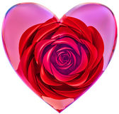 Red rose in glass heart for Valentine's Day Stock Images