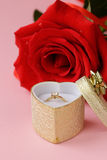 Red rose with a gold ring with a diamond Stock Image