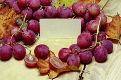 Red rose grapes with blank papers card Stock Photos