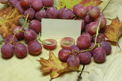 Red rose grapes with blank papers card Royalty Free Stock Photos
