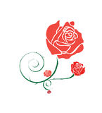 Red Rose Gray line Royalty Free Stock Images