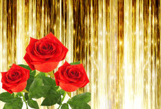 Red rose with green leaves on the gold background Stock Photos