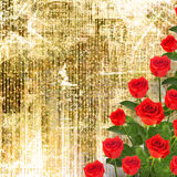Red rose with green leaves on the gold background Stock Image