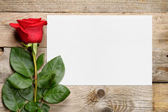 Red rose and greeting card. Red rose and blank greeting card Stock Photos