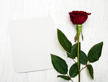 Red rose and greeting card Royalty Free Stock Image