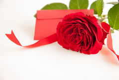Red rose with greeting card Royalty Free Stock Image