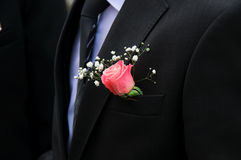 Red rose on a groom coat Stock Photography
