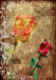 Red rose grunge. Red rose to frame from silver whirlled Stock Photos