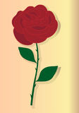 Red rose. Hand drawn image of a red rose Stock Photos