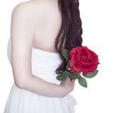 Red rose in hands valentine's day on white background. Red rose in the woman' s hand valentine's day on white background Stock Image