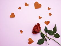 Red rose with have heart red paper royalty free stock images