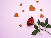 Red rose with have heart red paper royalty free stock photos