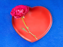 Red rose with a heart Stock Images