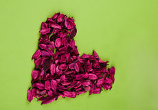 Red Rose heart. Heart made ??of red rose petals on the paper Royalty Free Stock Photo