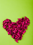 Red Rose heart. Heart made of red rose petals on the paper Stock Images