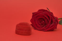 Red rose and heart Stock Image