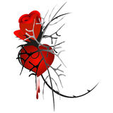 Red rose with heart and blood drops. Stock Photos