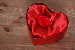 Red rose in heart shaped box Stock Photo