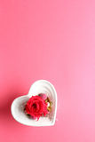 Red rose in heart shaped container Royalty Free Stock Image
