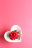 Red rose in heart shaped container Royalty Free Stock Images