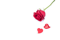 Red rose and heart shaped greeting card isolated Royalty Free Stock Photos