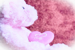 Red rose and heart. Teddy Bear with Heart on red background,concept valentine Royalty Free Stock Photography