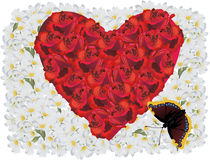Red rose heart in white flowers Stock Image