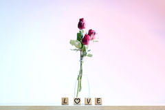 Red rose with heart and wooden alphabet Royalty Free Stock Photo