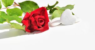 Red rose and hearts Royalty Free Stock Images