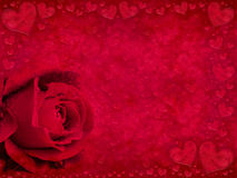 Red rose and hearts Stock Images