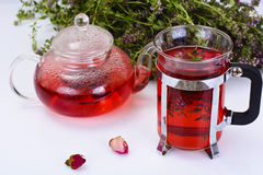 Red Rose Hibiscus Tea with Thyme Royalty Free Stock Image