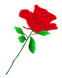 Red rose. Illustration of a red rose flower Royalty Free Stock Image