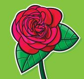 Red rose illustration Stock Photography
