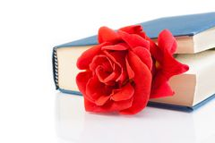 Red rose inside of the closed book with space for text Stock Photo