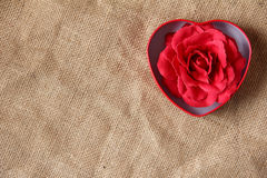 Red rose in iron box shape heart form Stock Photos