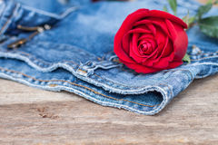 Red rose and jeans Royalty Free Stock Images