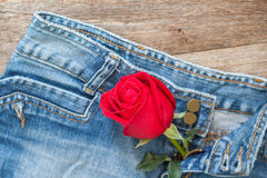 Red rose and jeans Stock Photography