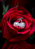 Red rose with a jeweller ornament in the centre Royalty Free Stock Photos