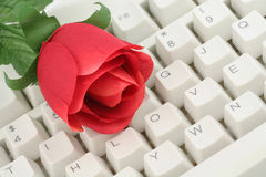 Red rose and keyboard Royalty Free Stock Images