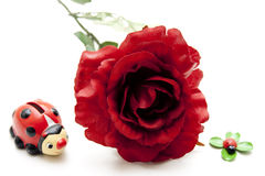 Red rose with ladybug Stock Images
