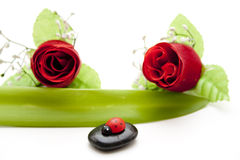 Red rose with ladybug on black stone Stock Image